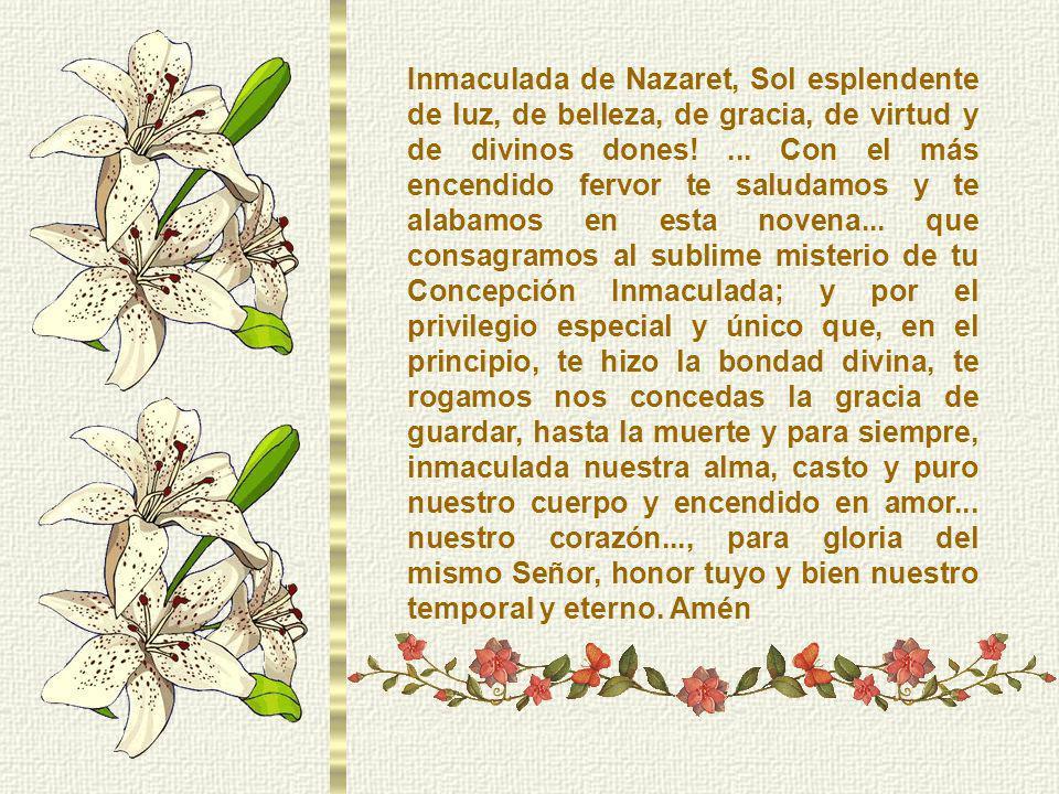 Inmaculada de Nazaret, Sol esplendente de luz, de belleza, de gracia, de virtud y de divinos dones.