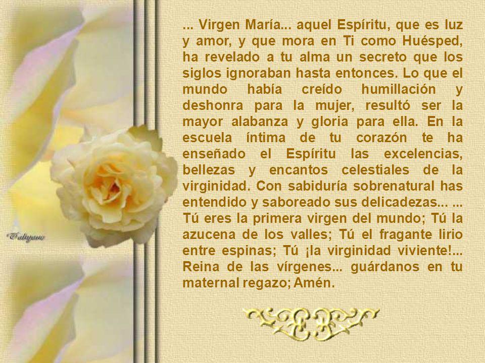 ... Virgen María...