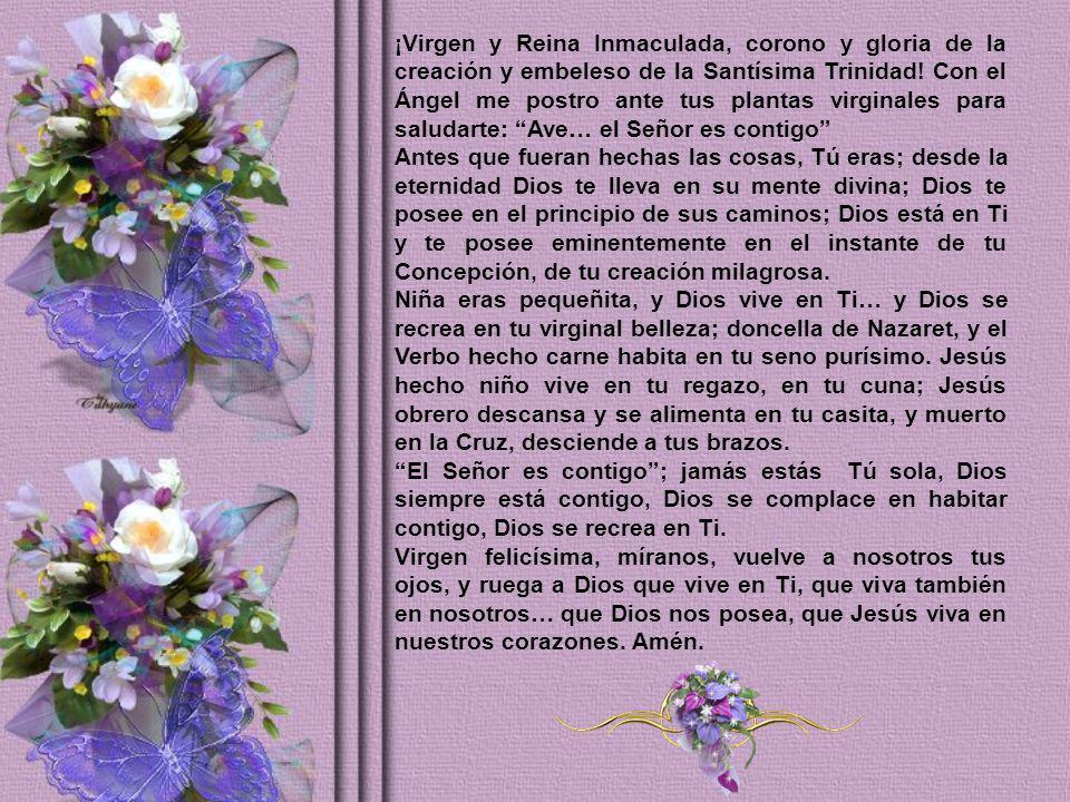 ¡Virgen y Reina Inmaculada, corono y gloria de la creación y embeleso de la Santísima Trinidad! Con el Ángel me postro ante tus plantas virginales para saludarte: Ave… el Señor es contigo