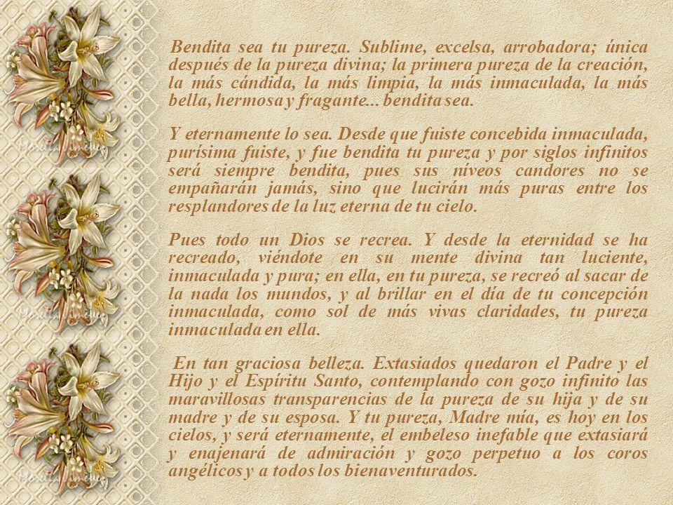 Bendita sea tu pureza. Sublime, excelsa, arrobadora; única después de la pureza divina; la primera pureza de la creación, la más cándida, la más limpia, la más inmaculada, la más bella, hermosa y fragante... bendita sea.