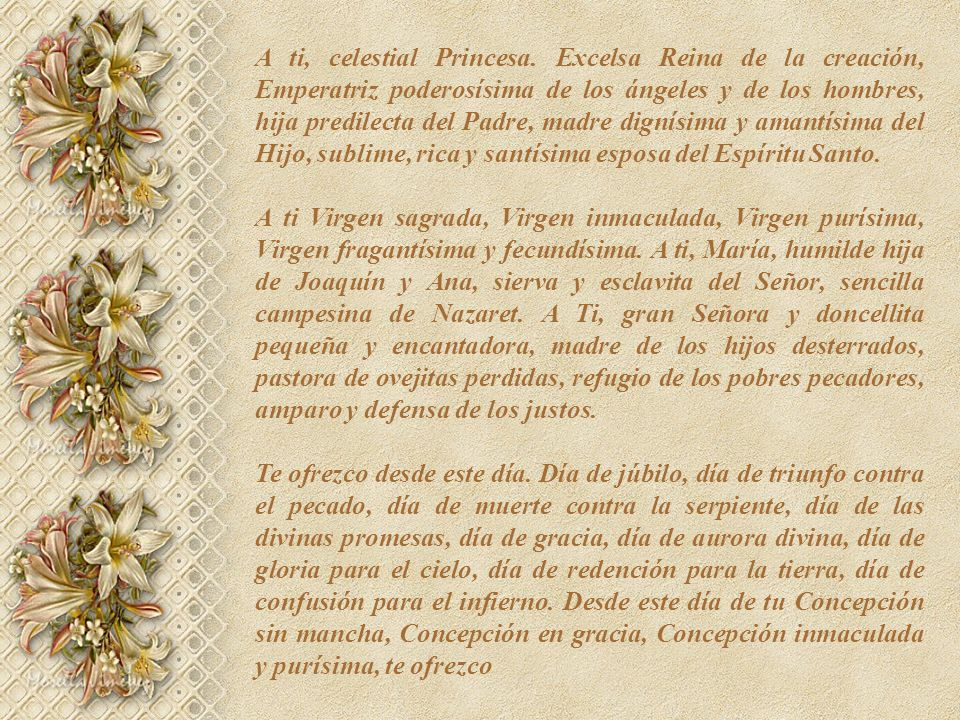 A ti, celestial Princesa