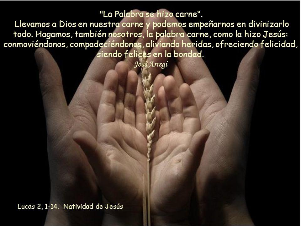 José Arregi Lucas 2, 1-14. Natividad de Jesús