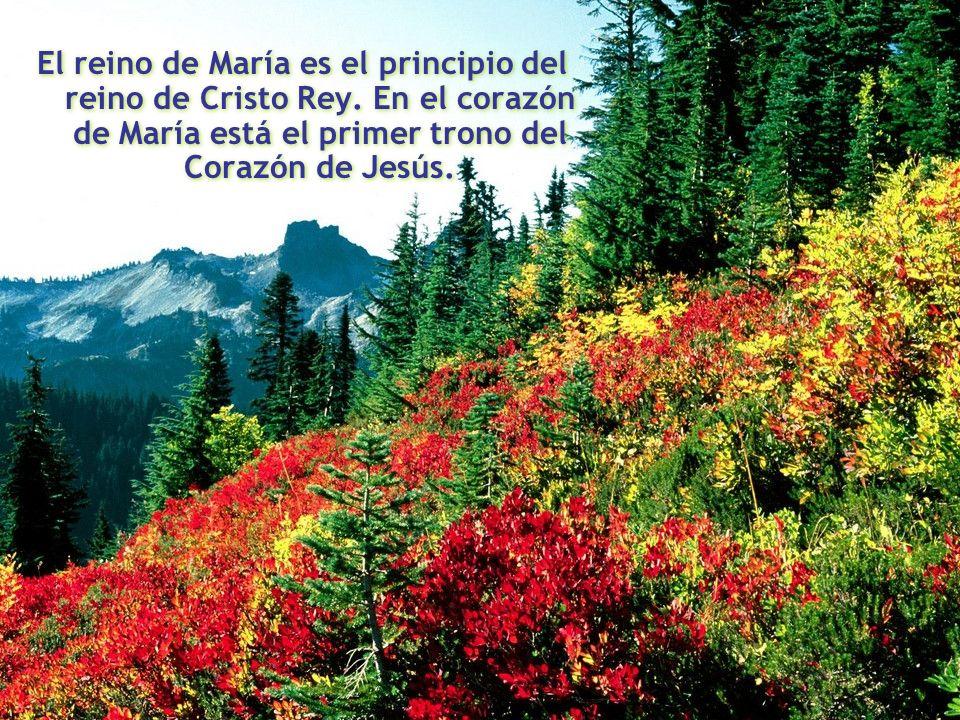 El reino de María es el principio del reino de Cristo Rey