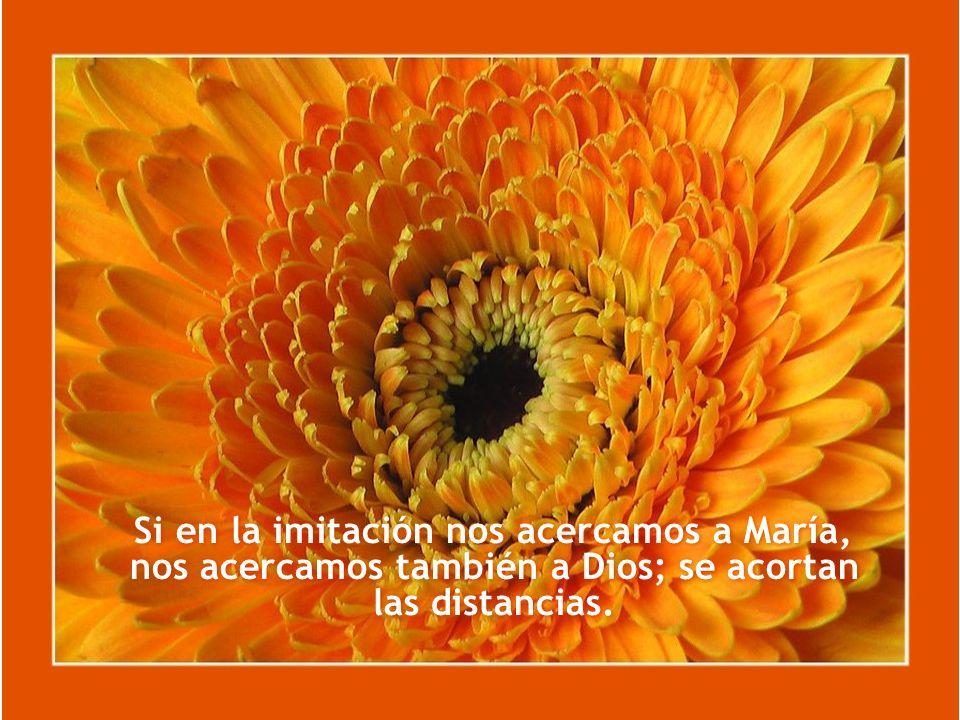 Si en la imitación nos acercamos a María, nos acercamos también a Dios; se acortan las distancias.