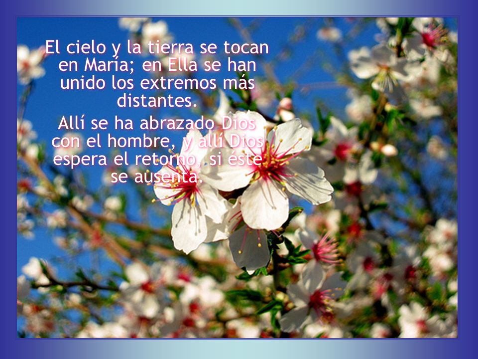 El cielo y la tierra se tocan en María; en Ella se han unido los extremos más distantes.