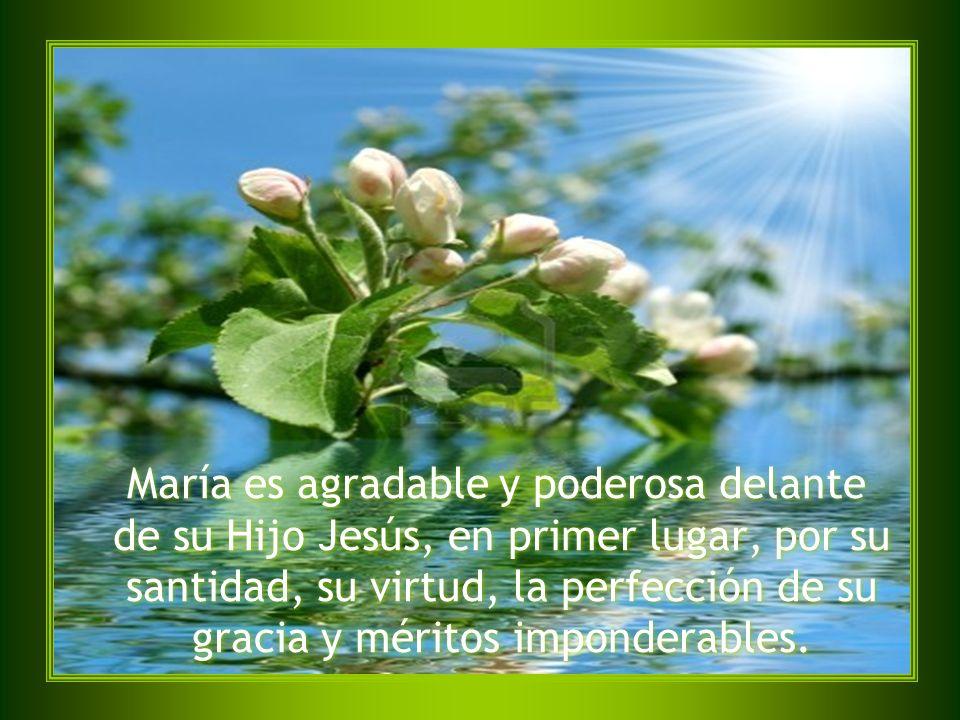 María es agradable y poderosa delante de su Hijo Jesús, en primer lugar, por su santidad, su virtud, la perfección de su gracia y méritos imponderables.