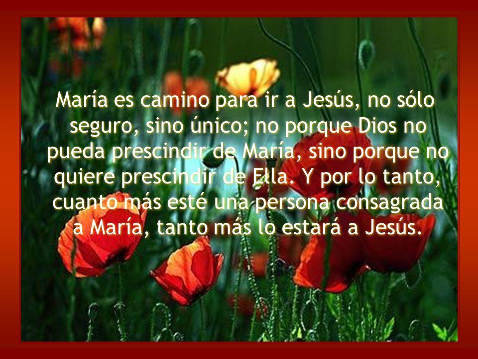 María es camino para ir a Jesús, no sólo seguro, sino único; no porque Dios no pueda prescindir de María, sino porque no quiere prescindir de Ella.