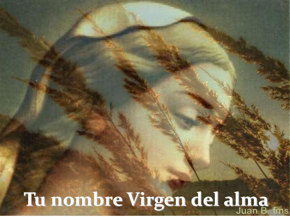 Tu nombre Virgen del alma