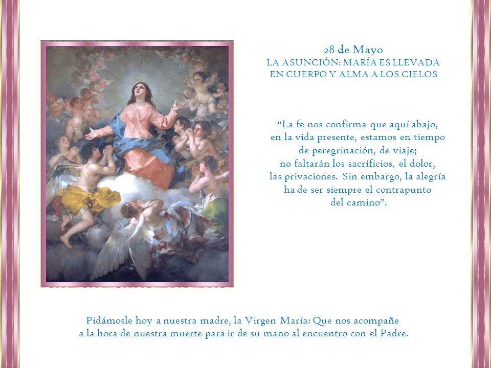 28 de Mayo La fe nos confirma que aquí abajo,