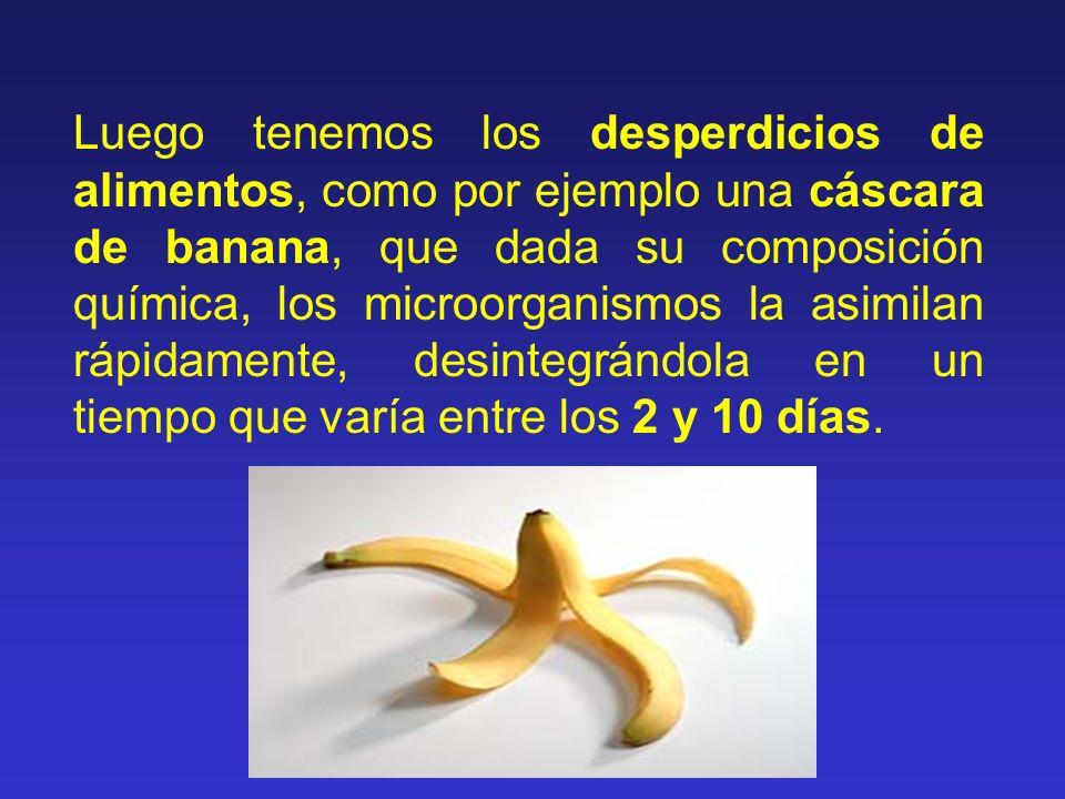 Luego tenemos los desperdicios de alimentos, como por ejemplo una cáscara de banana, que dada su composición química, los microorganismos la asimilan rápidamente, desintegrándola en un tiempo que varía entre los 2 y 10 días.