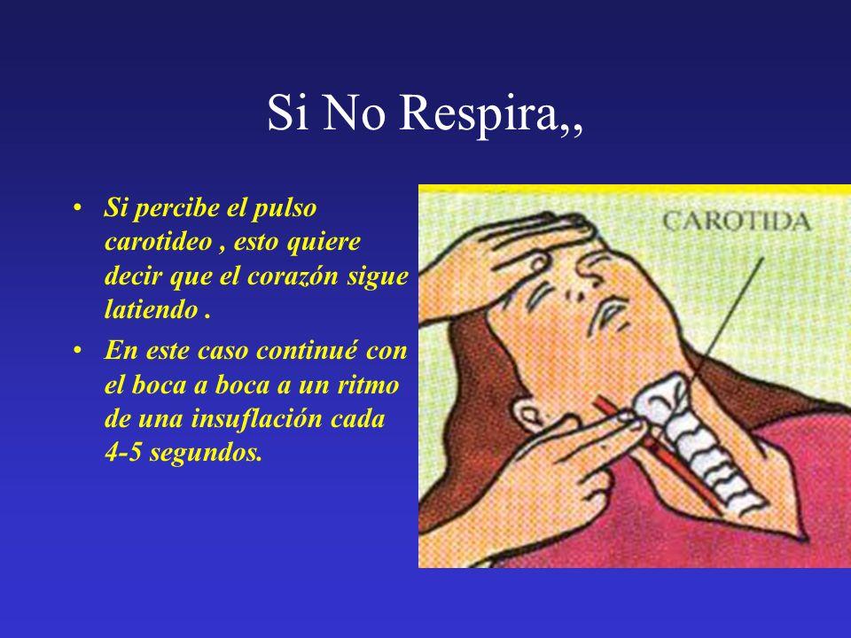Si No Respira,,Si percibe el pulso carotideo , esto quiere decir que el corazón sigue latiendo .