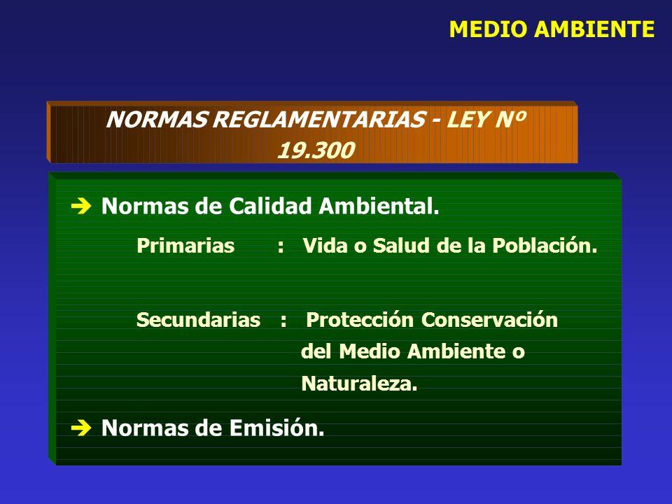 NORMAS REGLAMENTARIAS - LEY Nº 19.300