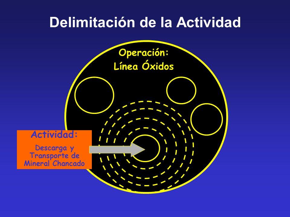 Delimitación de la Actividad