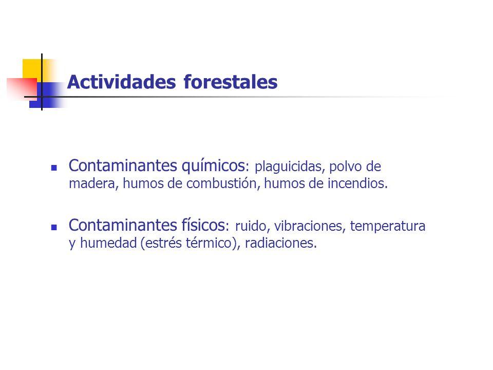 Actividades forestales