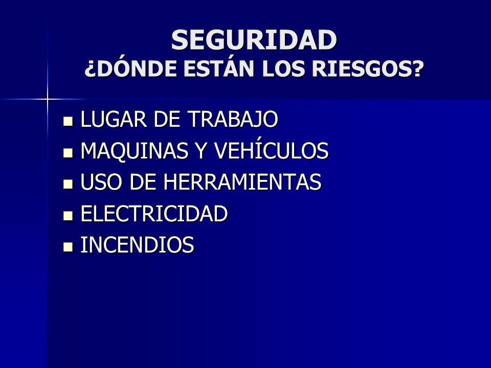 SEGURIDAD ¿DÓNDE ESTÁN LOS RIESGOS