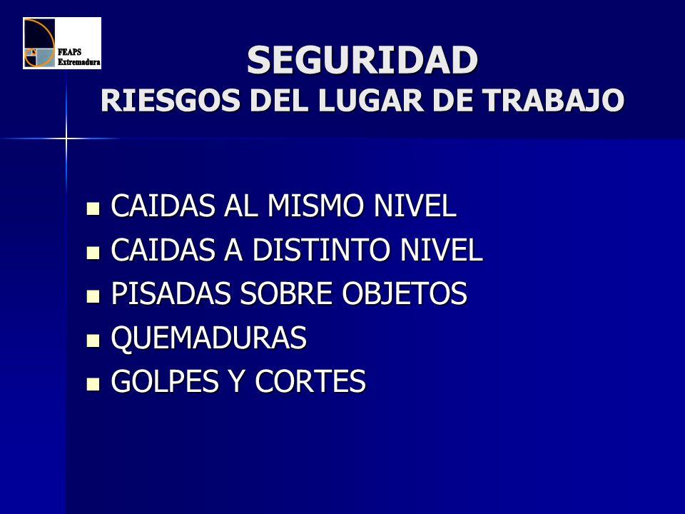 SEGURIDAD RIESGOS DEL LUGAR DE TRABAJO