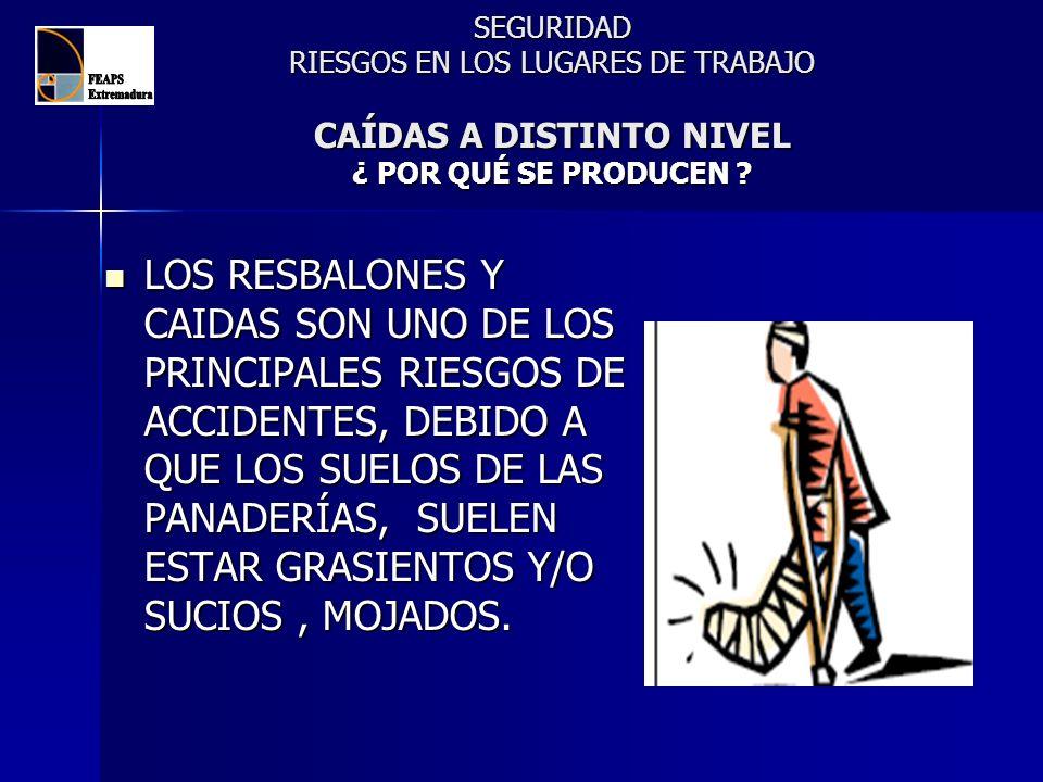 SEGURIDAD RIESGOS EN LOS LUGARES DE TRABAJO CAÍDAS A DISTINTO NIVEL ¿ POR QUÉ SE PRODUCEN