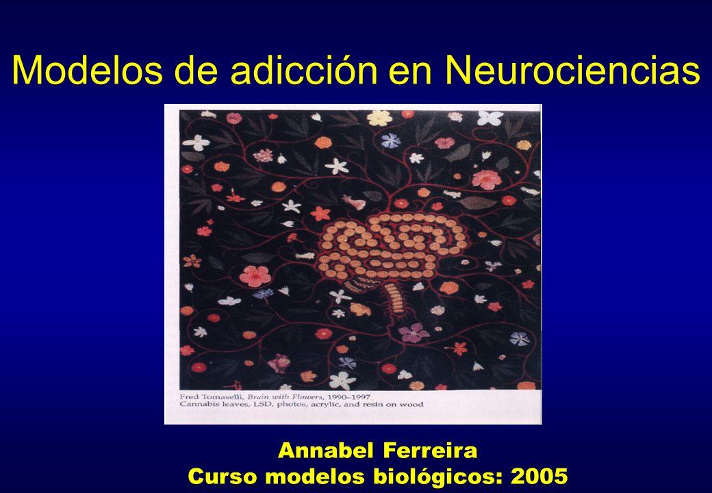 Modelos de adicción en Neurociencias