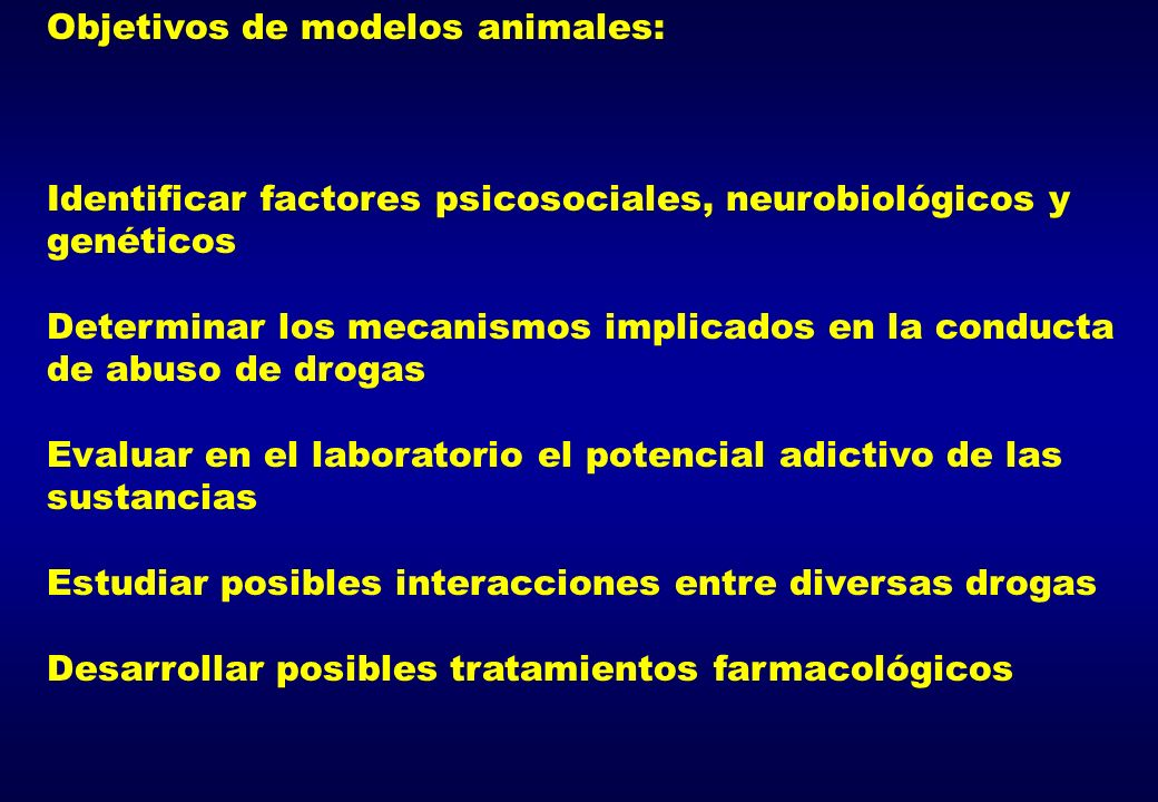 Objetivos de modelos animales:
