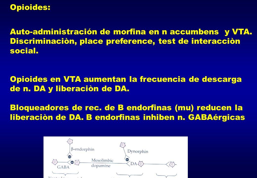 Opioides:Auto-administración de morfina en n accumbens y VTA. Discriminaciòn, place preference, test de interacciòn social.