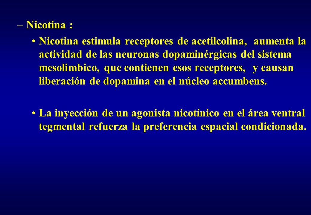 Nicotina :