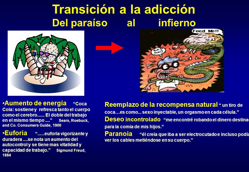 Transición a la adicción