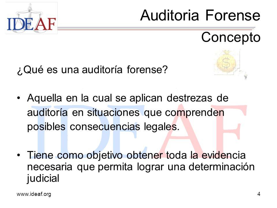 Auditoria Forense Concepto ¿Qué es una auditoría forense