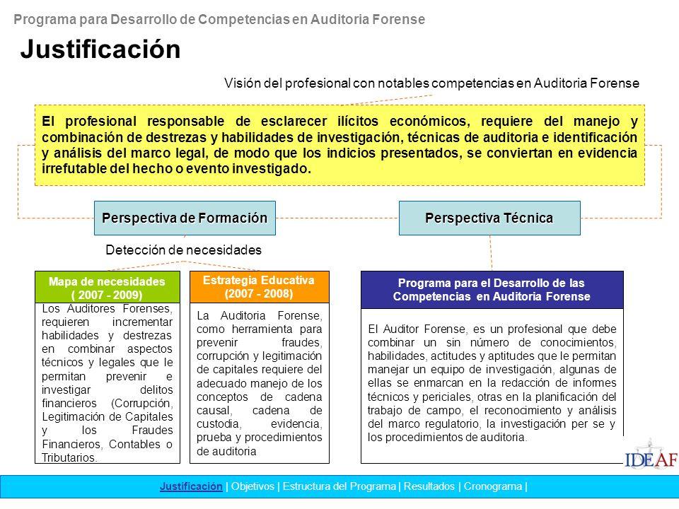 Programa para Desarrollo de Competencias en Auditoria Forense