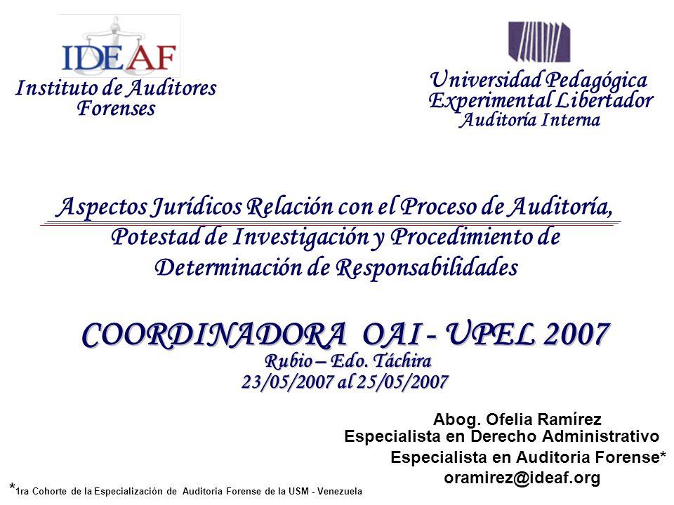 Instituto de Auditores Forenses