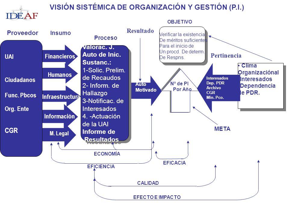 VISIÓN SISTÉMICA DE ORGANIZACIÓN Y GESTIÓN (P.I.)
