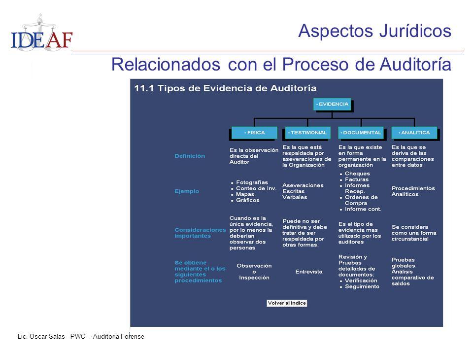 Relacionados con el Proceso de Auditoría