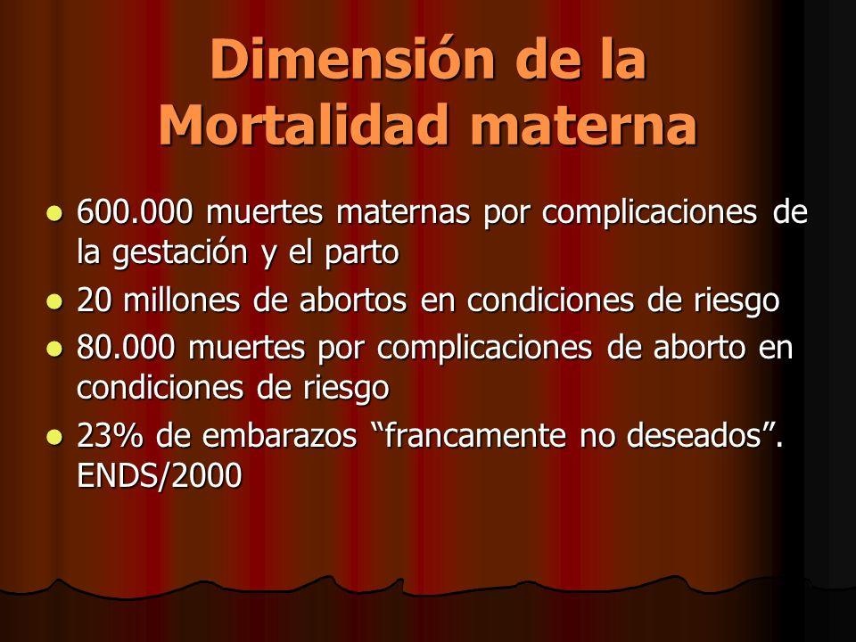 Dimensión de la Mortalidad materna