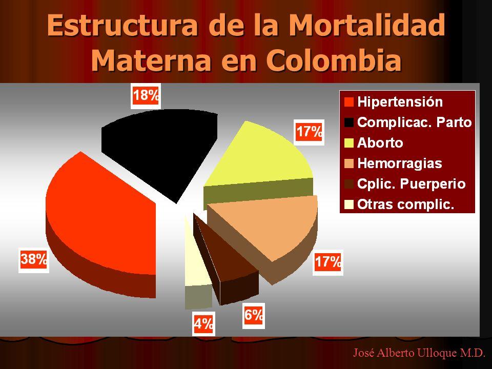 Estructura de la Mortalidad Materna en Colombia