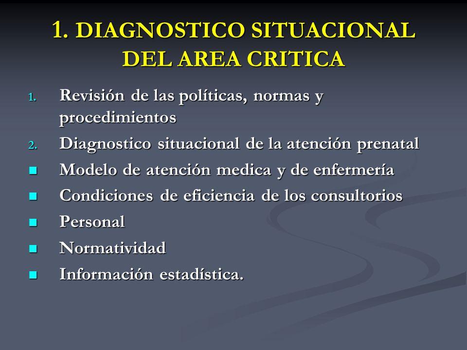 1. DIAGNOSTICO SITUACIONAL DEL AREA CRITICA