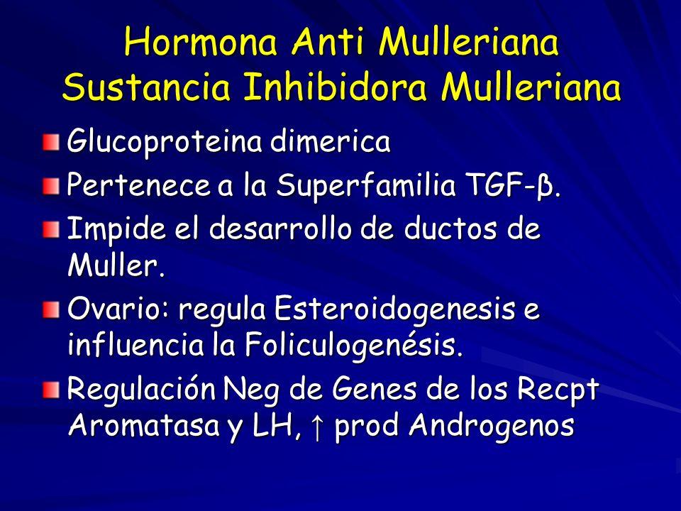 Hormona Anti Mulleriana Sustancia Inhibidora Mulleriana