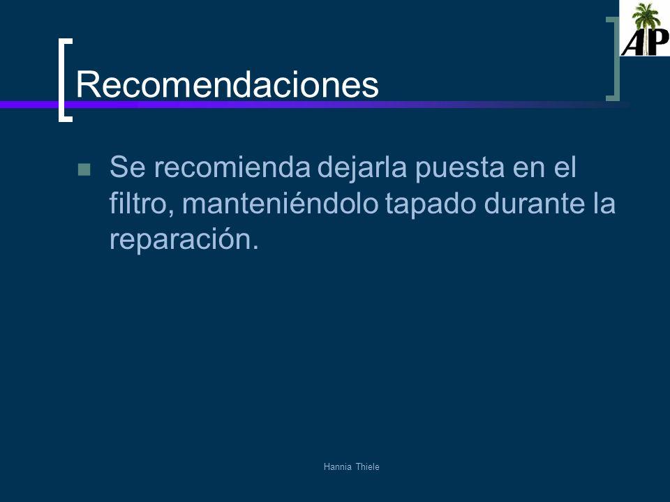 Recomendaciones Se recomienda dejarla puesta en el filtro, manteniéndolo tapado durante la reparación.