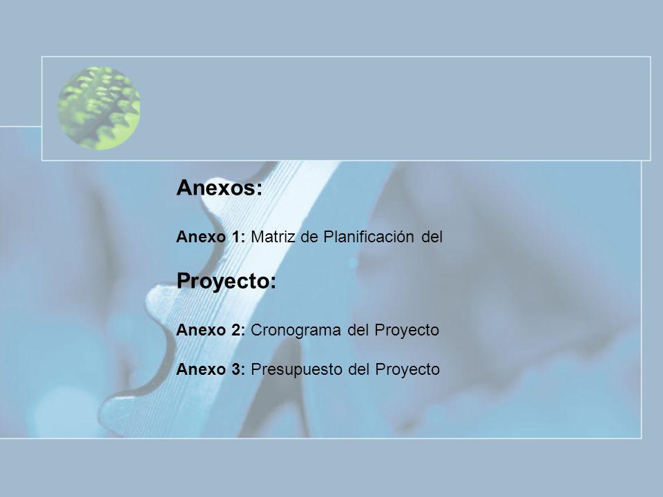 Anexos: Proyecto: Anexo 1: Matriz de Planificación del