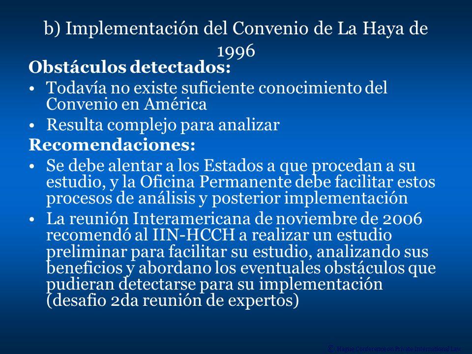 b) Implementación del Convenio de La Haya de 1996