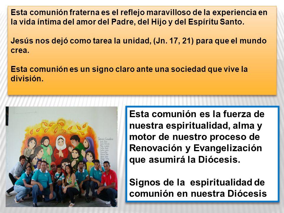 Signos de la espiritualidad de comunión en nuestra Diócesis