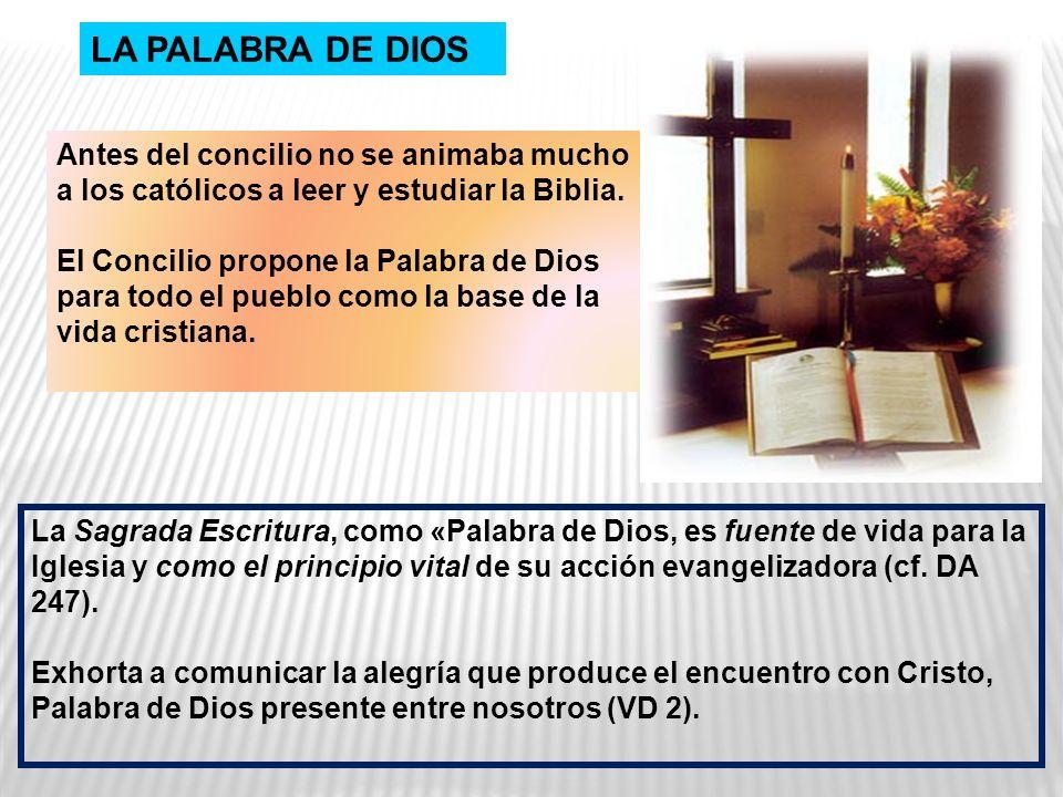 LA PALABRA DE DIOS Antes del concilio no se animaba mucho a los católicos a leer y estudiar la Biblia.