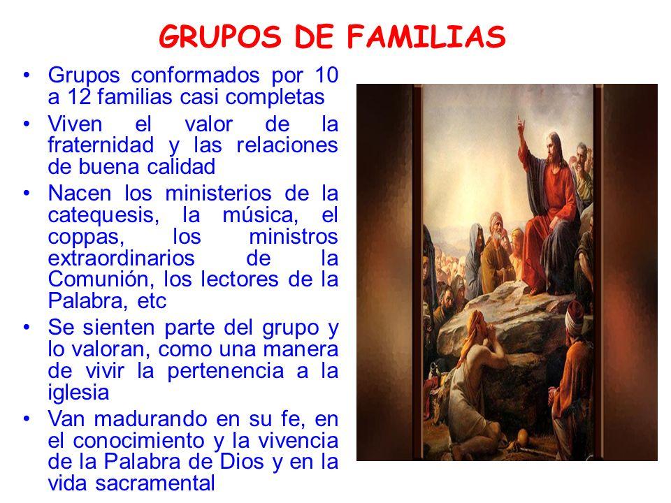 GRUPOS DE FAMILIAS Grupos conformados por 10 a 12 familias casi completas. Viven el valor de la fraternidad y las relaciones de buena calidad.