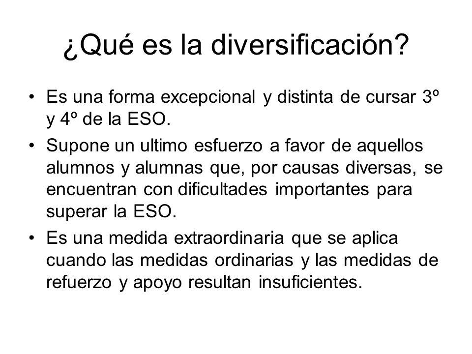 ¿Qué es la diversificación