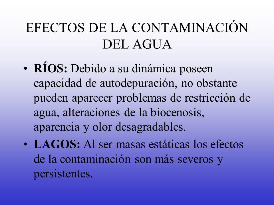 EFECTOS DE LA CONTAMINACIÓN DEL AGUA