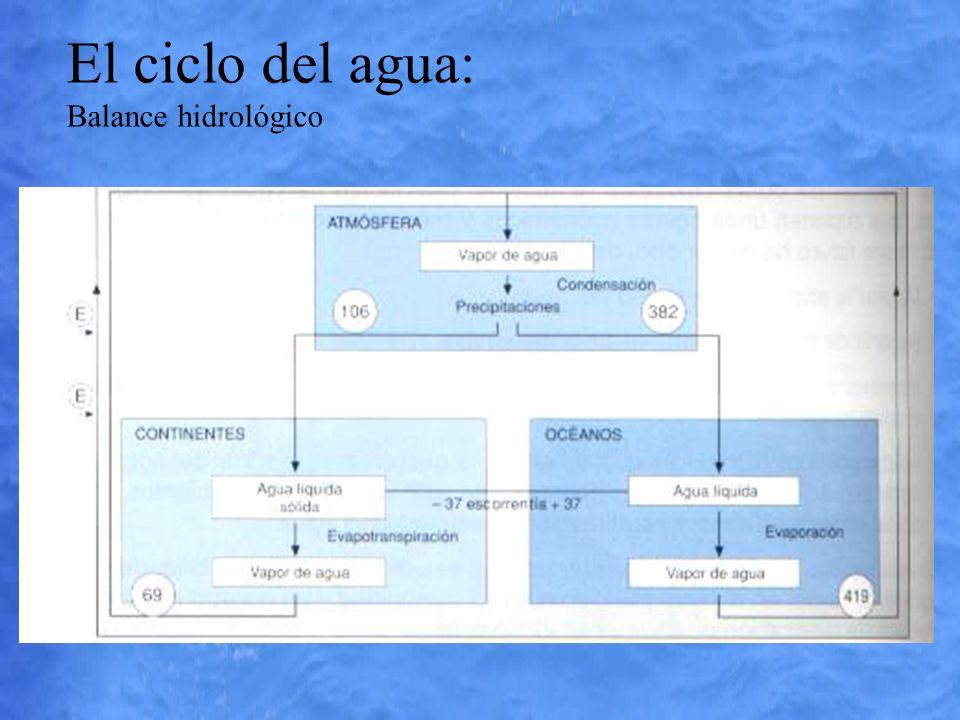 El ciclo del agua: Balance hidrológico