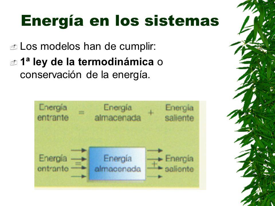 Energía en los sistemas