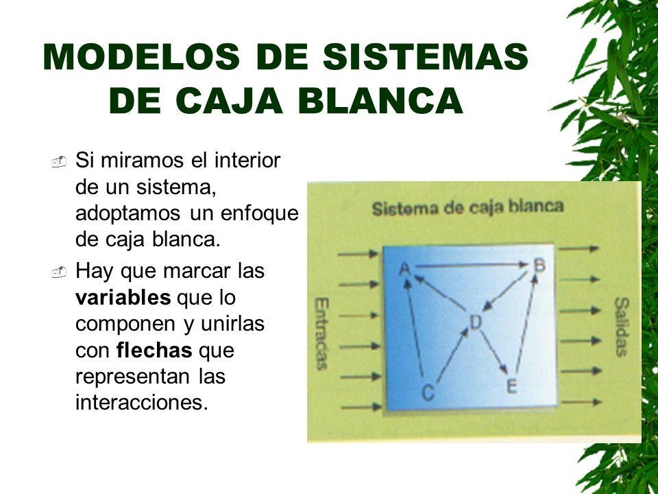MODELOS DE SISTEMAS DE CAJA BLANCA