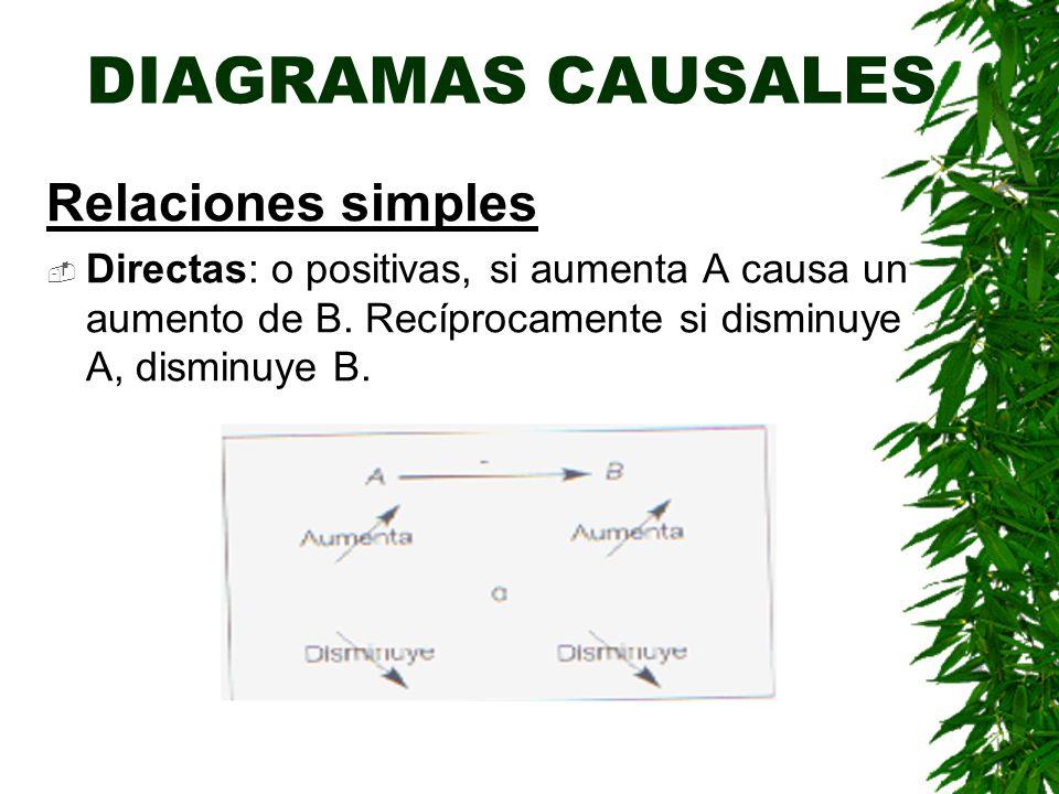 DIAGRAMAS CAUSALES Relaciones simples
