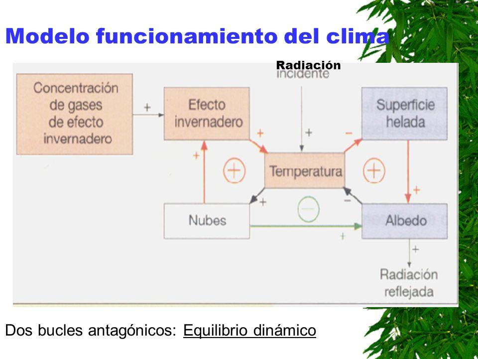 Modelo funcionamiento del clima Dos bucles antagónicos: Equilibrio dinámico