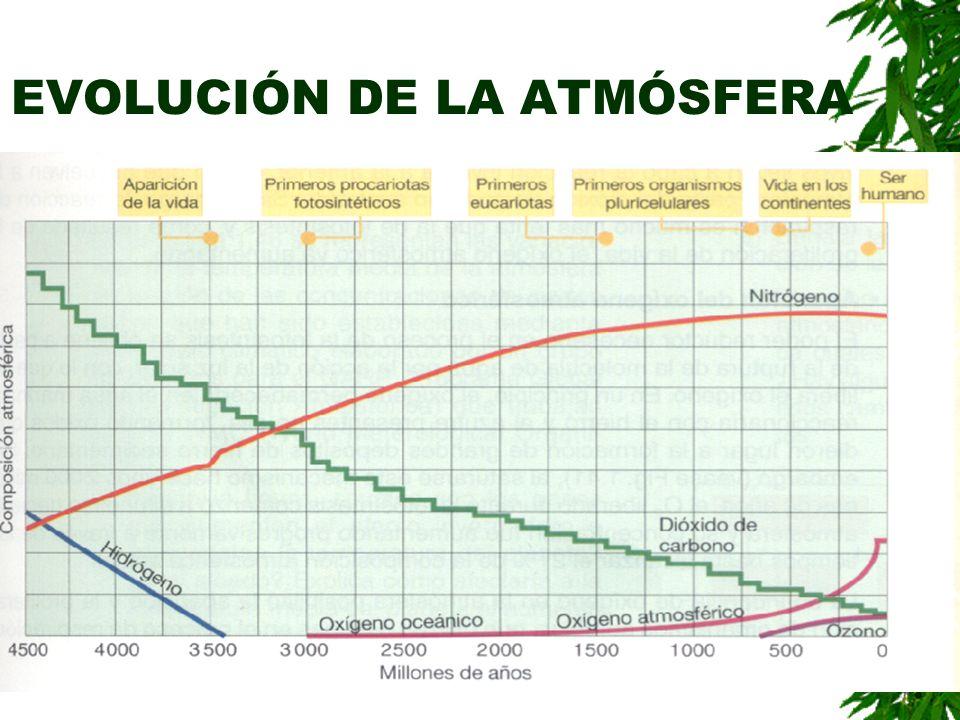 EVOLUCIÓN DE LA ATMÓSFERA