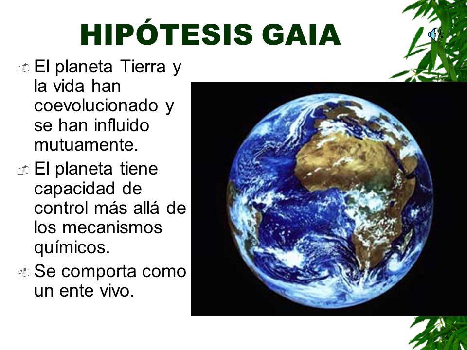 HIPÓTESIS GAIA El planeta Tierra y la vida han coevolucionado y se han influido mutuamente.